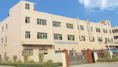 the factory of professional china mould maker, injection moulding company china